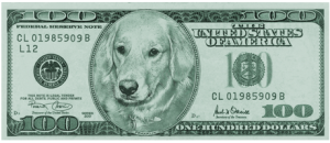 Doggie Dollah